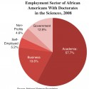 Where African Americans With Scientific Doctorates Find Work