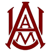 Alabama A&M Students Take to the Streets
