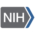 National Institute on Aging, NIH — Deputy Director