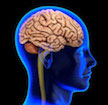 Study Finds Childhood Poverty Affects Adult Brains' Ability to Control Emotions