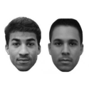 Study Finds That a Person's Racial Biases Affect How They Perceive Multiracial Individuals