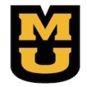 University of Missouri Establishes Office for Civil Rights