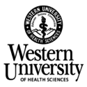 Western University of Health Sciences — Chair / Assistant or Associate Professor, Medical Sciences Education