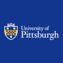 University of Pittsburgh — Associate / Full Professor, Black Radical Tradition in Urban Education