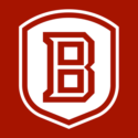 Bradley University — Vice President for Diversity, Equity, and Inclusion